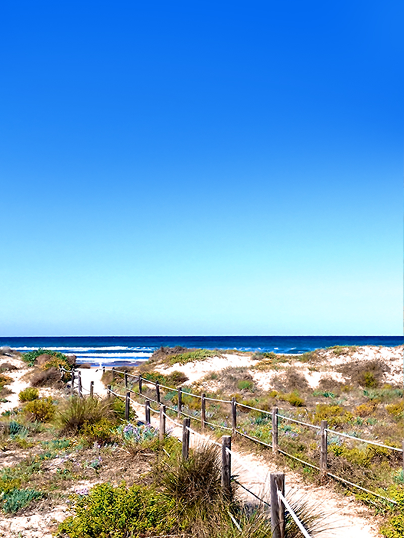 vip-villa-riomar-strandweg